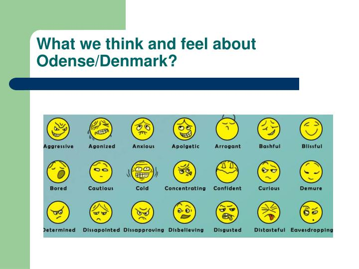 What we think and feel about Odense/Denmark?