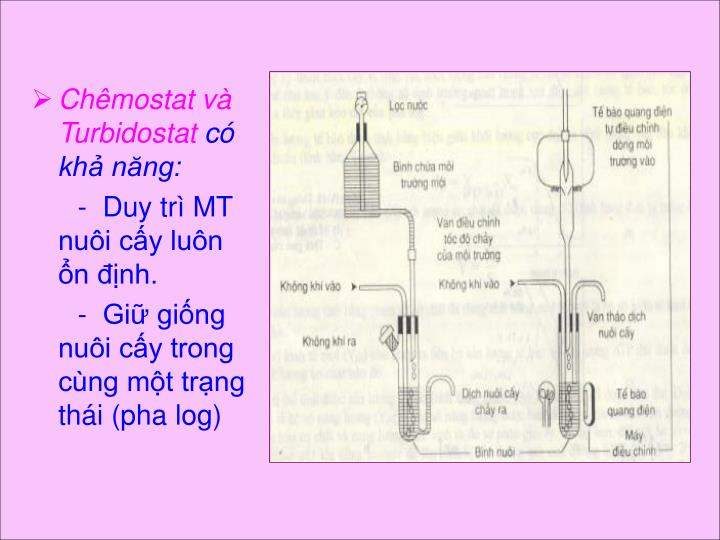 Chêmostat và Turbidostat