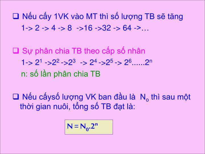 Nếu cấy 1VK vào MT thì số lượng TB sẽ tăng