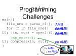 programming challenges1