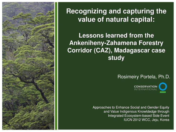 Recognizing and capturing the value of natural capital: