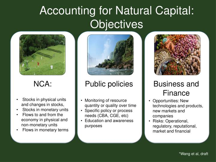 Accounting for Natural Capital: Objectives