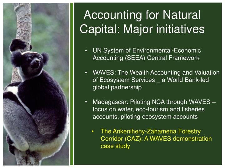 Accounting for Natural Capital: Major initiatives
