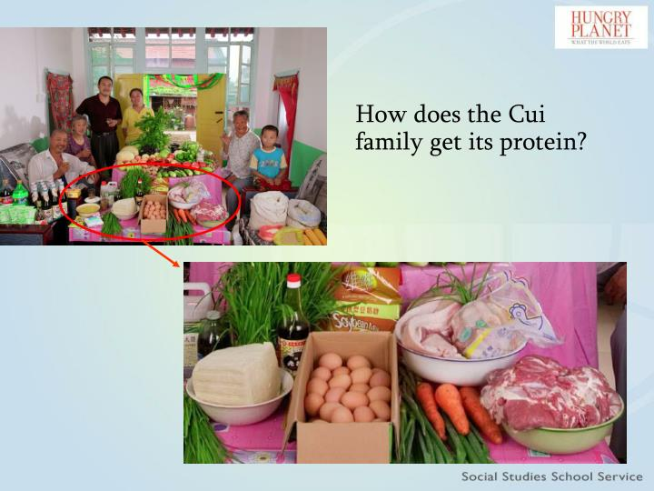 How does the Cui family get its protein?