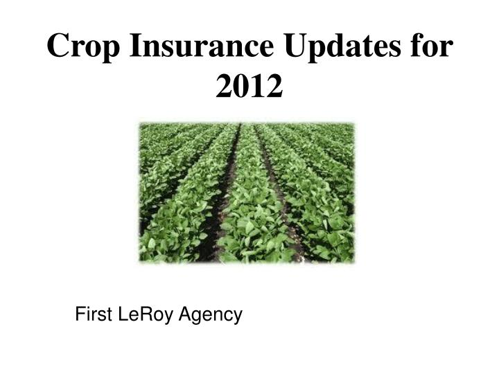 crop insurance updates for 2012 n.