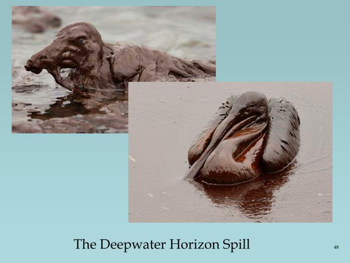 The Deepwater Horizon Spill