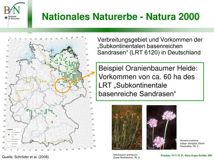 """Beispiel Oranienbaumer Heide: Vorkommen von ca. 60 ha des LRT """"Subkontinentale basenreiche Sandrasen"""""""