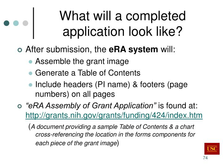 What will a completed application look like?