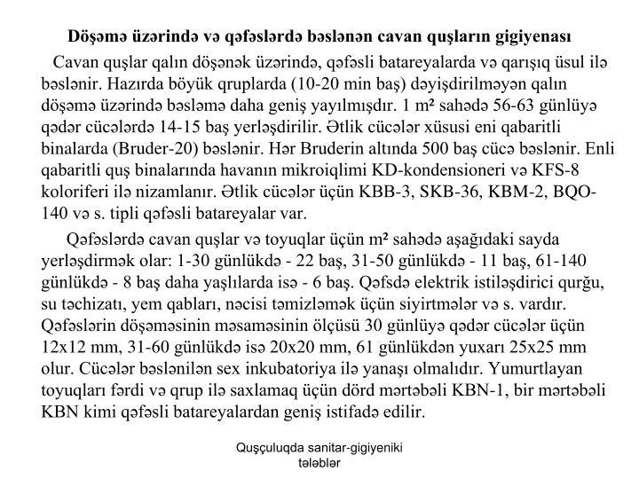Döşəmə üzərində və qəfəslərdə bəslənən cavan quşların gigiyenası