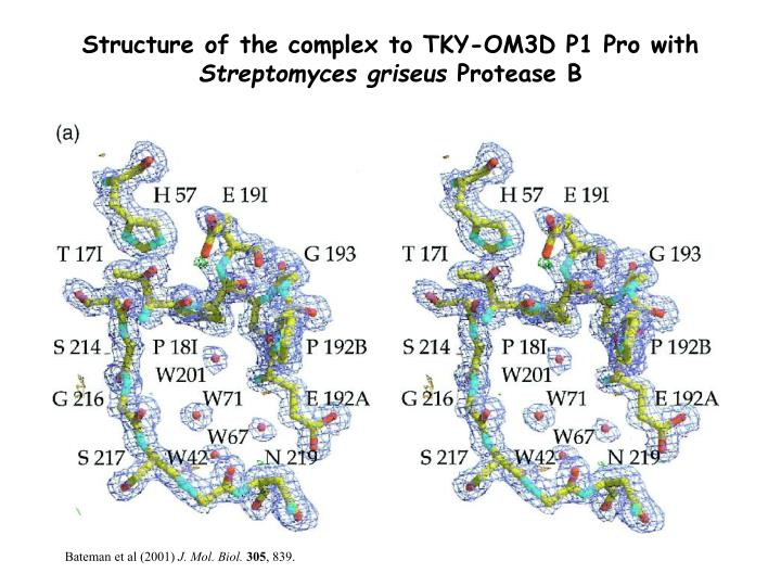 Structure of the complex to TKY-OM3D P1 Pro with