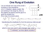 one rung of evolution