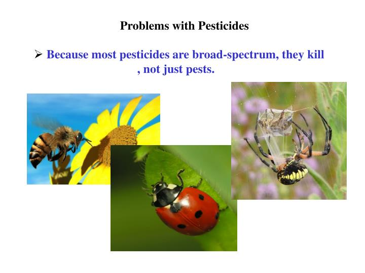 Problems with Pesticides