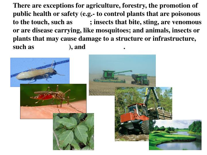 There are exceptions for agriculture, forestry, the promotion of