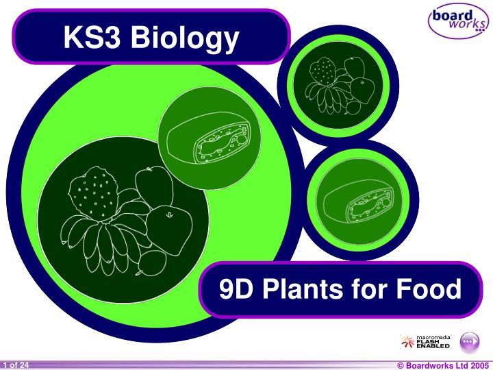 ks3 biology n.