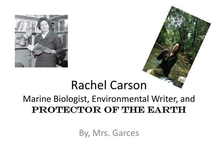 rachel carson marine biologist environmental writer and protector of the earth n.