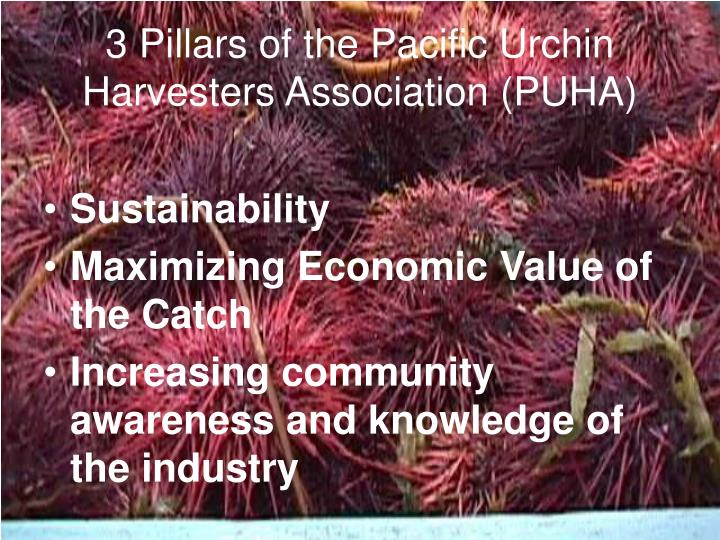 3 pillars of the pacific urchin harvesters association puha