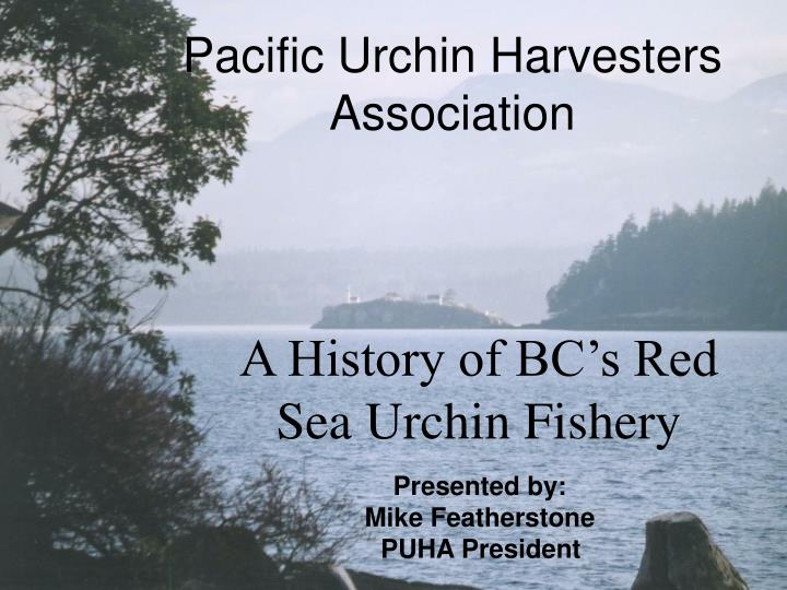 Pacific urchin harvesters association