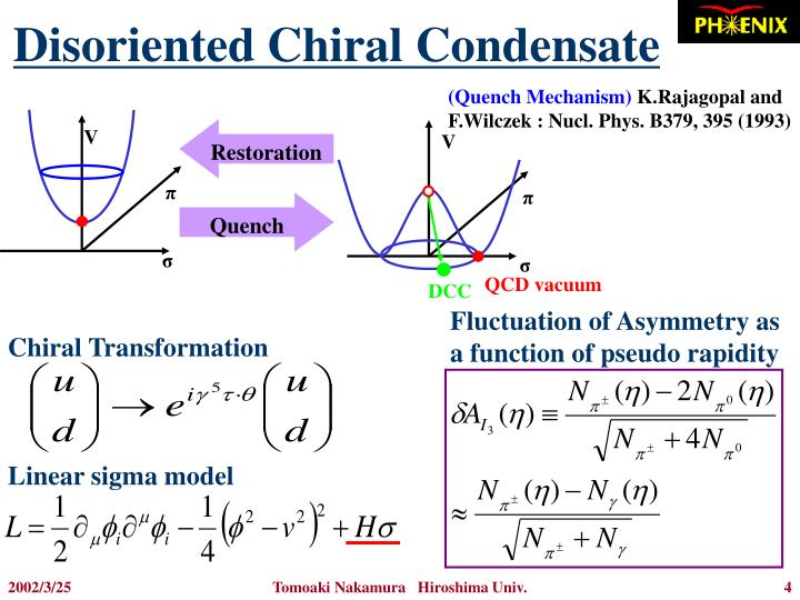 Disoriented Chiral Condensate