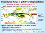 precipitation change in global warming simulations