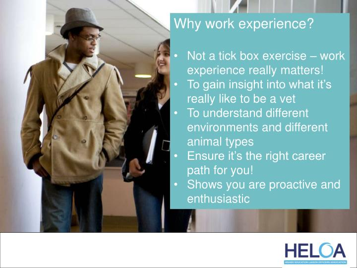 Why work experience?