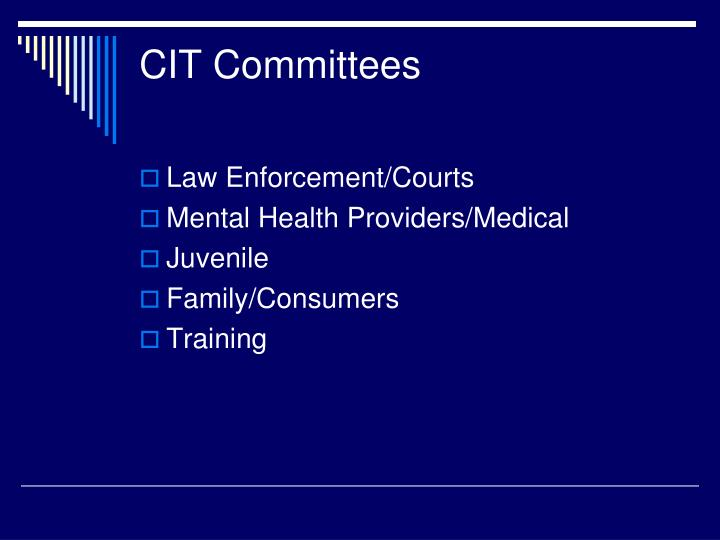 CIT Committees