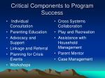 critical components to program success