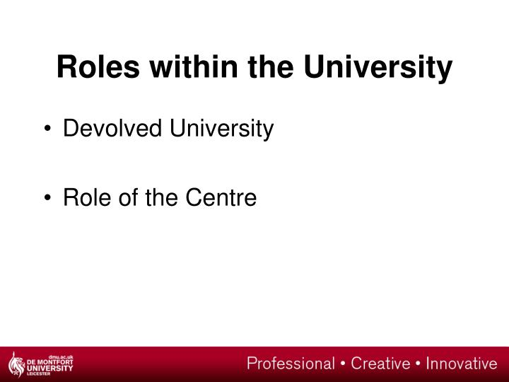 Roles within the University