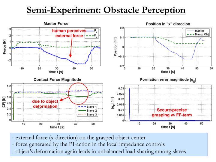 Semi-Experiment: Obstacle Perception