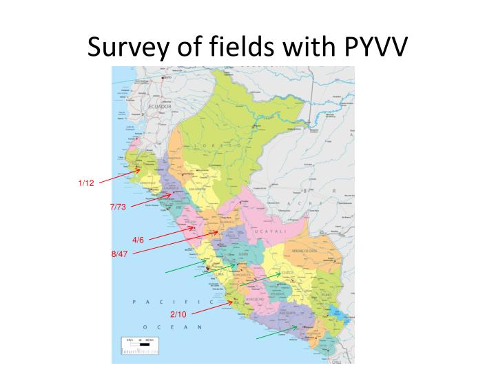 Survey of fields with pyvv