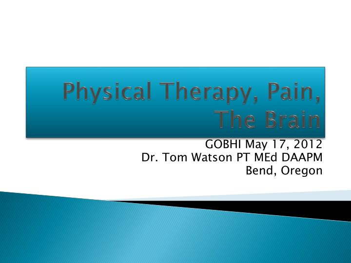 physical therapy pain the brain n.