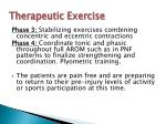 therapeutic exercise3