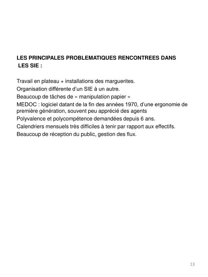 LES PRINCIPALES PROBLEMATIQUES RENCONTREES DANS