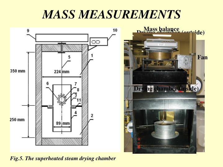 MASS MEASUREMENTS
