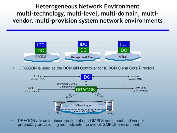Heterogeneous Network Environment