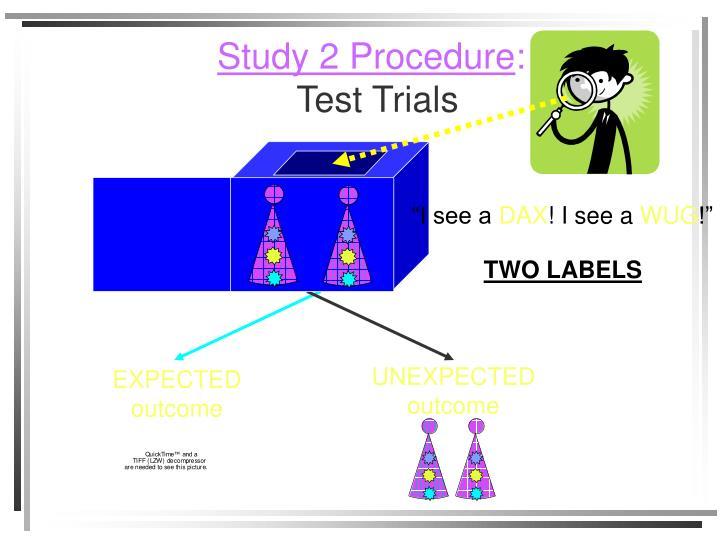 Study 2 Procedure