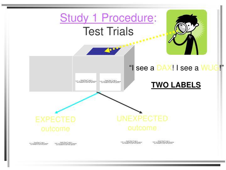 Study 1 Procedure