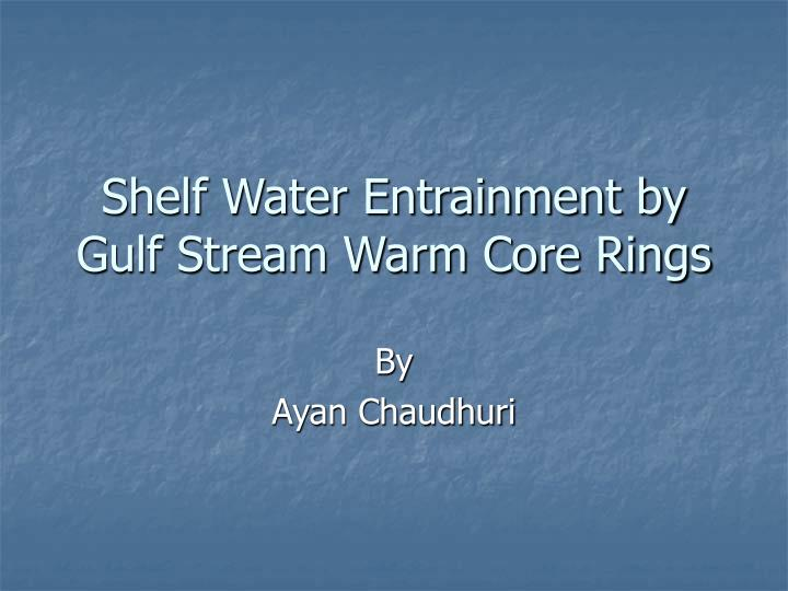 Shelf water entrainment by gulf stream warm core rings