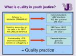 what is quality in youth justice