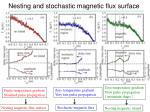 nesting and stochastic magnetic flux surface