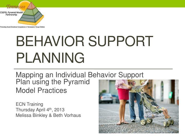 behavior support planning n.