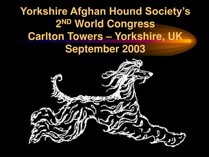 yorkshire afghan hound society s 2 nd world congress carlton towers yorkshire uk september 2003 n.