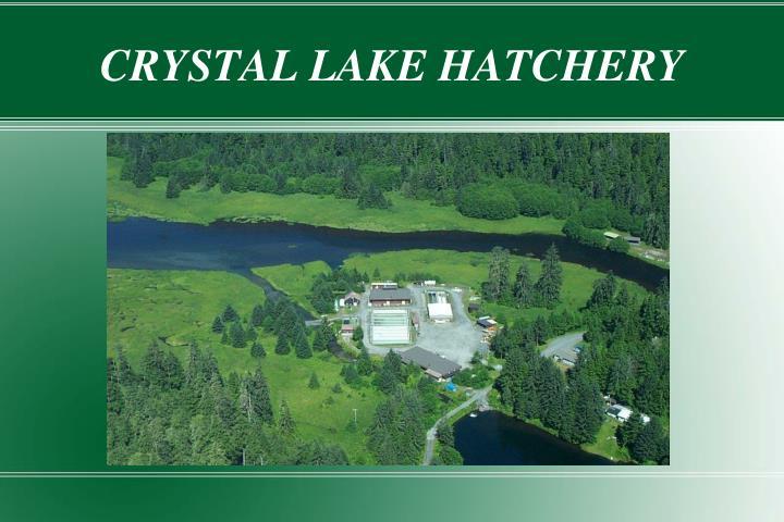 crystal lake hatchery n.