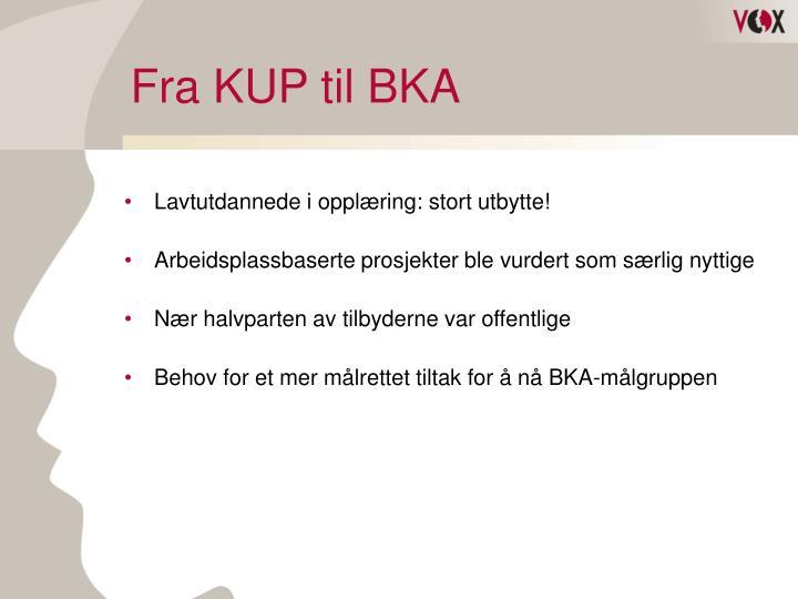 Fra KUP til BKA