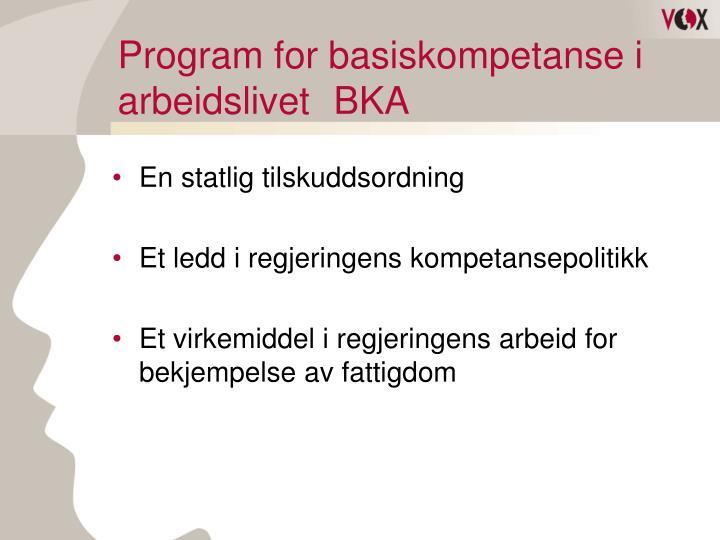 Program for basiskompetanse i arbeidslivet bka