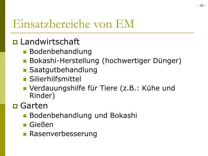 Einsatzbereiche von EM