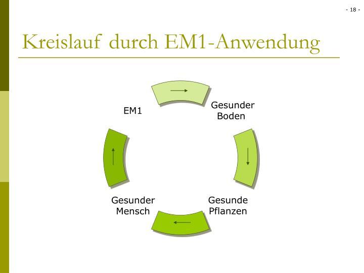 Kreislauf durch EM1-Anwendung
