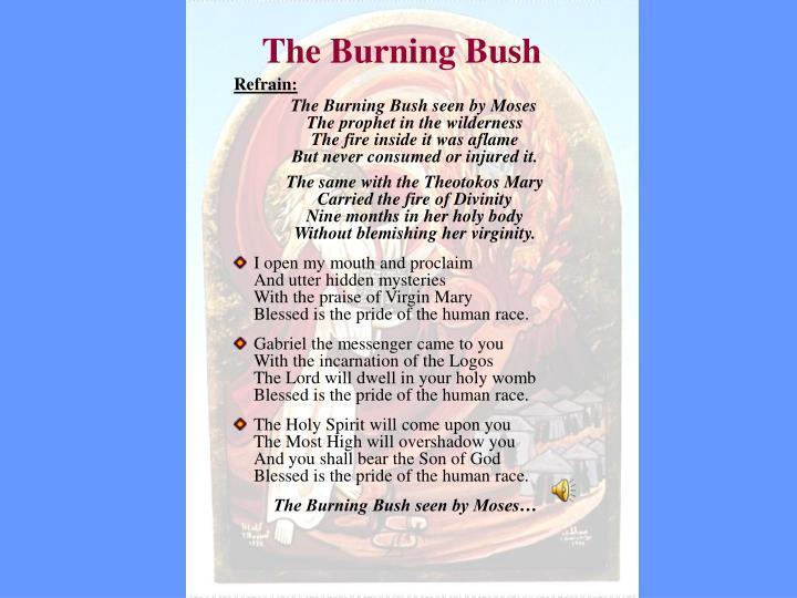 the burning bush n.