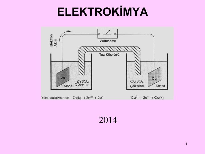 elektrok mya