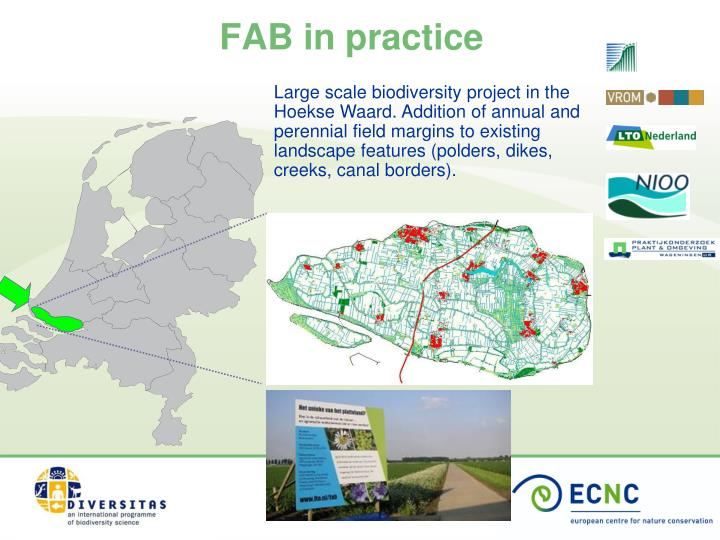 Large scale biodiversity project in the Hoekse Waard. Addition of annual and perennial field margins to existing landscape features (polders, dikes, creeks, canal borders).