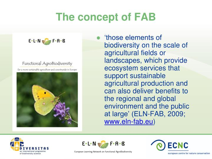 The concept of FAB